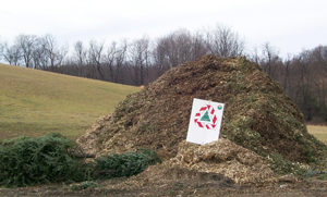 A pile of mulch made from recycled Christmas trees